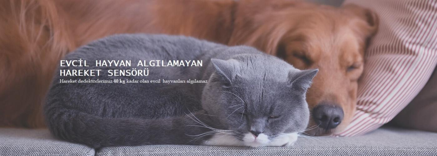 evcil-hayvan-alarm-sistemi-citynet